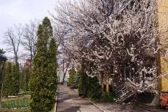 GS_April_04