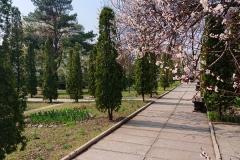 GS_April_06
