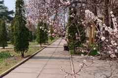 GS_April_07