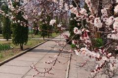 GS_April_08